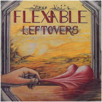 Flexable Leftovers